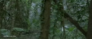 Pirate Of The Lost Sea (2008) Sample.mp4 Tamil Movies Download